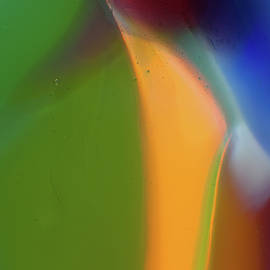 Omaste Witkowski - Underwater Fantasies Abstract Glass Photography by Omashte