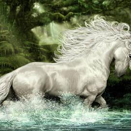 Unicorn of Wistman's Wood by Susan Schroder