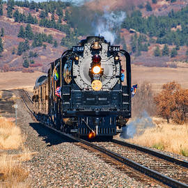 Union Pacific 844 by Alana Thrower