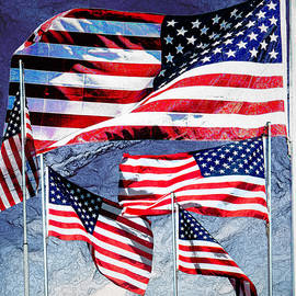 11086 Flags of the United States Of America by Colin Hunt
