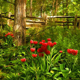Untamed Tulip Forest - Impressions Of Spring by Georgia Mizuleva