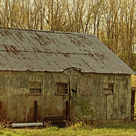 William Sturgell - Unused Shed at the Compost Facility