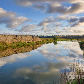 Eddie Yerkish - Upper Newport Bay Nature Preserve 2
