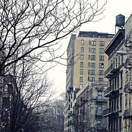 Sarah Loft - Upper West Side Winter
