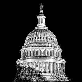 Val Black Russian Tourchin - US Capitol Dome in Black and White
