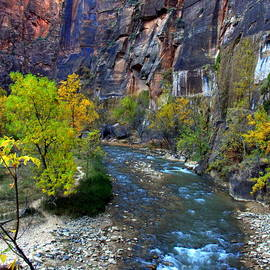 Utah Zion Mountains Canyons and Rivers by Charlene Cox