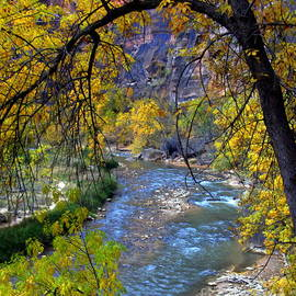 Charlene Cox - Utah  Zion Waterfalls Canyons and Streams