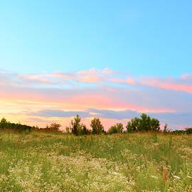 Ally White - Utopian Sunset