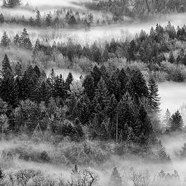Wes and Dotty Weber - Valley Fog