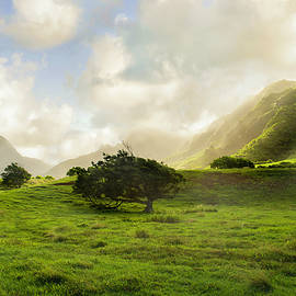 Valley. Oahu. Hawaii by Ksenia VanderHoff