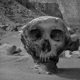 David Gordon - Valley of the Skulls I BW