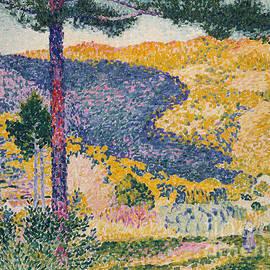 Valley with Fir  Shade on the Mountain, 1909  - Henri Edmond Cross