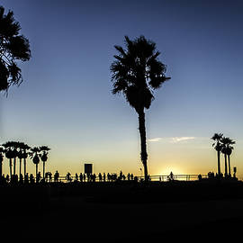 Venice Beach Skatepark by Chris Cousins