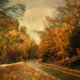 Vermont Country Road in Autumn by Joann Vitali