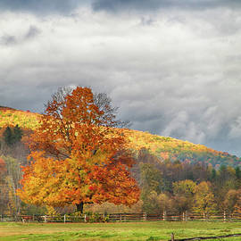 Jeff Folger - Vermont fall colors after the rain