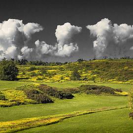 Yuri Lev - Vermont Landscape # 1