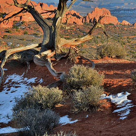 View Along Park Road In Arches National Park by Ray Mathis