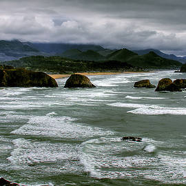 View from Ecola by David Patterson