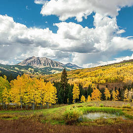 John Bartelt - View From Kebler Pass Road - Crested Butte, CO