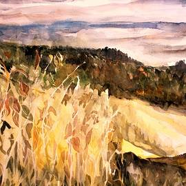 Mindy Newman - View from Sugar Mountain