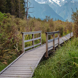 View of Mount Tasman New Zealand by Joan Carroll