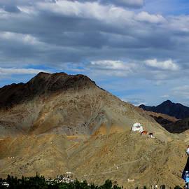Srijani Bhattacharya - View of the view