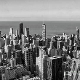 View on Chicago by Patricia Hofmeester