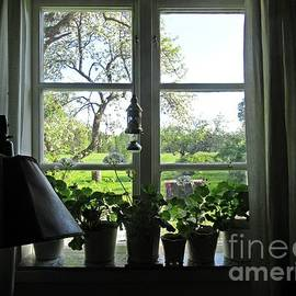View To The Garden by Chani Demuijlder