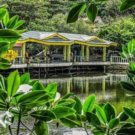 Mark Sellers - Villa Igang Pavilion