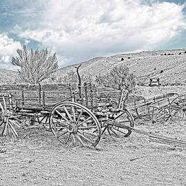 Vinage Wooden Wagon Black and White by Jennie Marie Schell