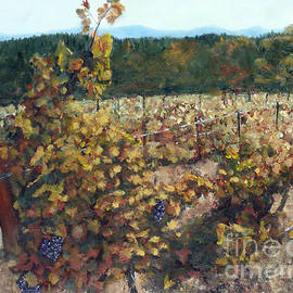 Randy Sprout - Vineyard Lucchesi