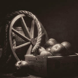 Vintage Apple Basket Still Life by Tom Mc Nemar