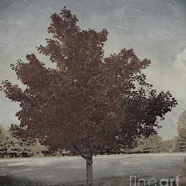 Vintage Autumn Moment by Luther Fine Art