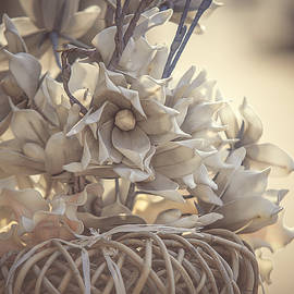 Jenny Rainbow - Vintage Dream. Dutch Flowers