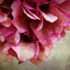 Terry Davis - Vintage Hydrangea