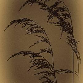 Vintage Marshgrass by Dale Kauzlaric