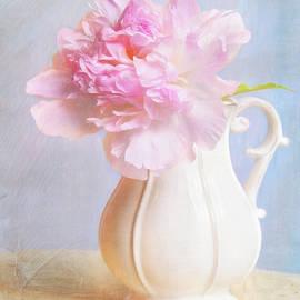 Daphne Sampson - Vintage Pink Peony In Vase