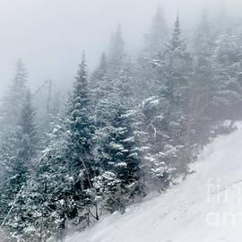 James Aiken - Vintage Winter Scene 2