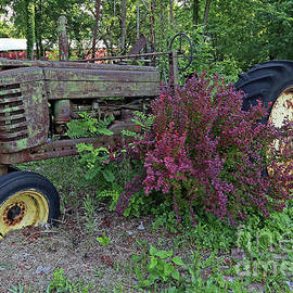 Vintge Tractor Coxville, Indiana by Steve Gass