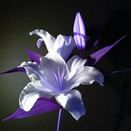 Delynn Addams - Violet Lily
