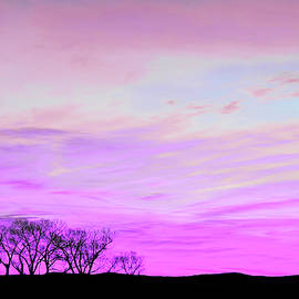 Violet Skies by Jennie Marie Schell