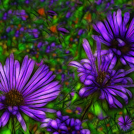 Jean-Marc Lacombe - Violet Wildflowers