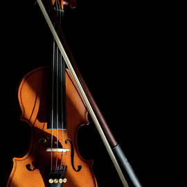 Violin in Light and Shadows by Perry Correll