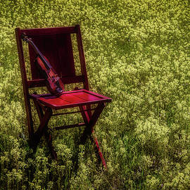 Garry Gay - Violin On Old Red Chair