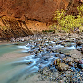Pierre Leclerc Photography - Virgin Narrows of Zion