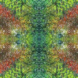 Rainbow Artist Orlando L aka Kevin Orlando Lau - Visions Of The Spiritual Seeker #1461