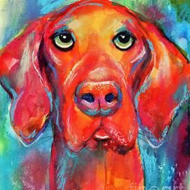 Vizsla Dog Portrait by Svetlana Novikova