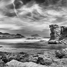 Guido Montanes Castillo - Volcanic reef BW