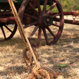 Wagon stake by Toni Hopper