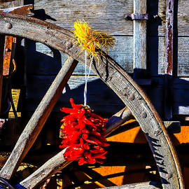 Wagon Wheel With Chili Peppers - Garry Gay